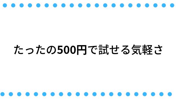 たったの500円で試せる気軽さ