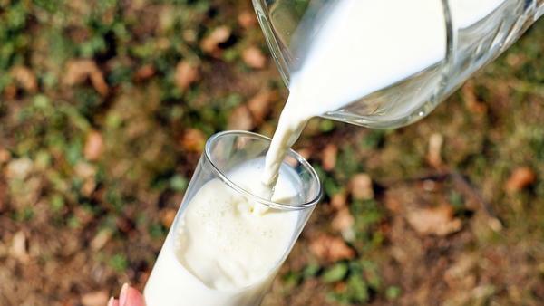牛乳・飲むヨーグルト=タンパク質は悪臭のもと